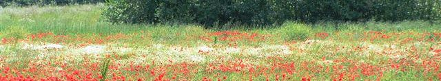 natura in Umbria